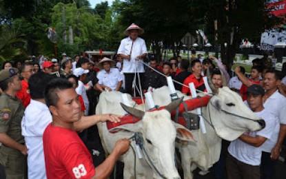 Buktikan Sebagai Anak Petani, OD-SK ke Kantor Naik Bendi