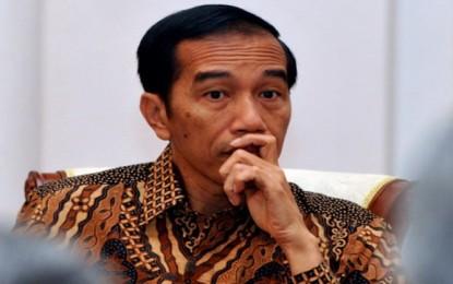 Presiden Jokowi Diundang KNPI Buka Jambore Poros Maritim Pemuda