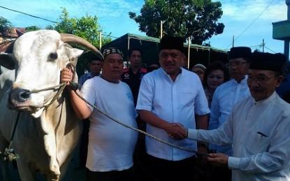 Sapi Bantuan Jokowi Diserahkan di Masjid Raya Ahmad Yani
