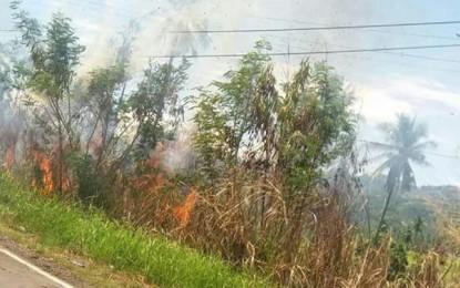 Kebakaran Lahan di Minsel Berhasil Dipadamkan Tim Gabungan
